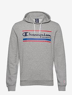 Hooded Sweatshirt - hoodies - gray melange light
