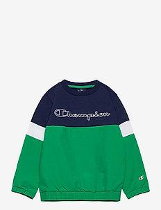 Crewneck Sweatshirt - sweatshirts - medieval blue