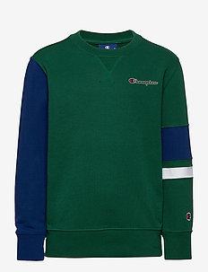 Crewneck Sweatshirt - sweat-shirt - evergreen