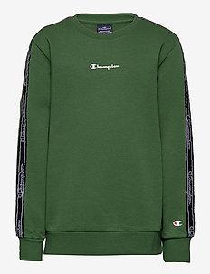 Crewneck Sweatshirt - sweatshirts - greener pastures