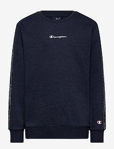 Crewneck Sweatshirt - sweatshirts - sky captain