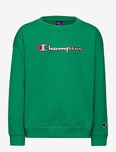 Crewneck Sweatshirt - sweatshirts - mint