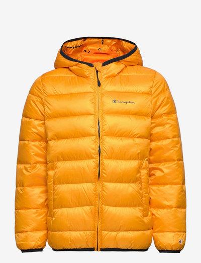 Hooded Jacket - kurtki ocieplane - saffron