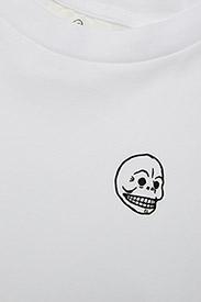 Screen top Skull