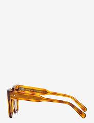 Chimi Eyewear - 07 HAVANA - d-shaped - ltortoise - 3