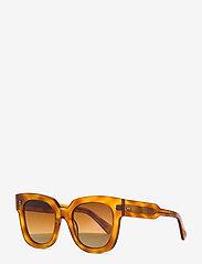 Chimi Eyewear - 08 HAVANA - d-vormige zonnebril - ltortoise - 2