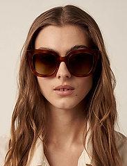 Chimi Eyewear - 08 HAVANA - d-vormige zonnebril - ltortoise - 0