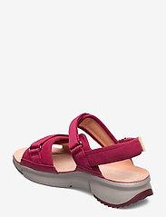 Clarks - Tri Walk - platta sandaler - berry combi - 2