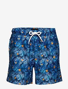 Blue Shorts - BLUE AOP