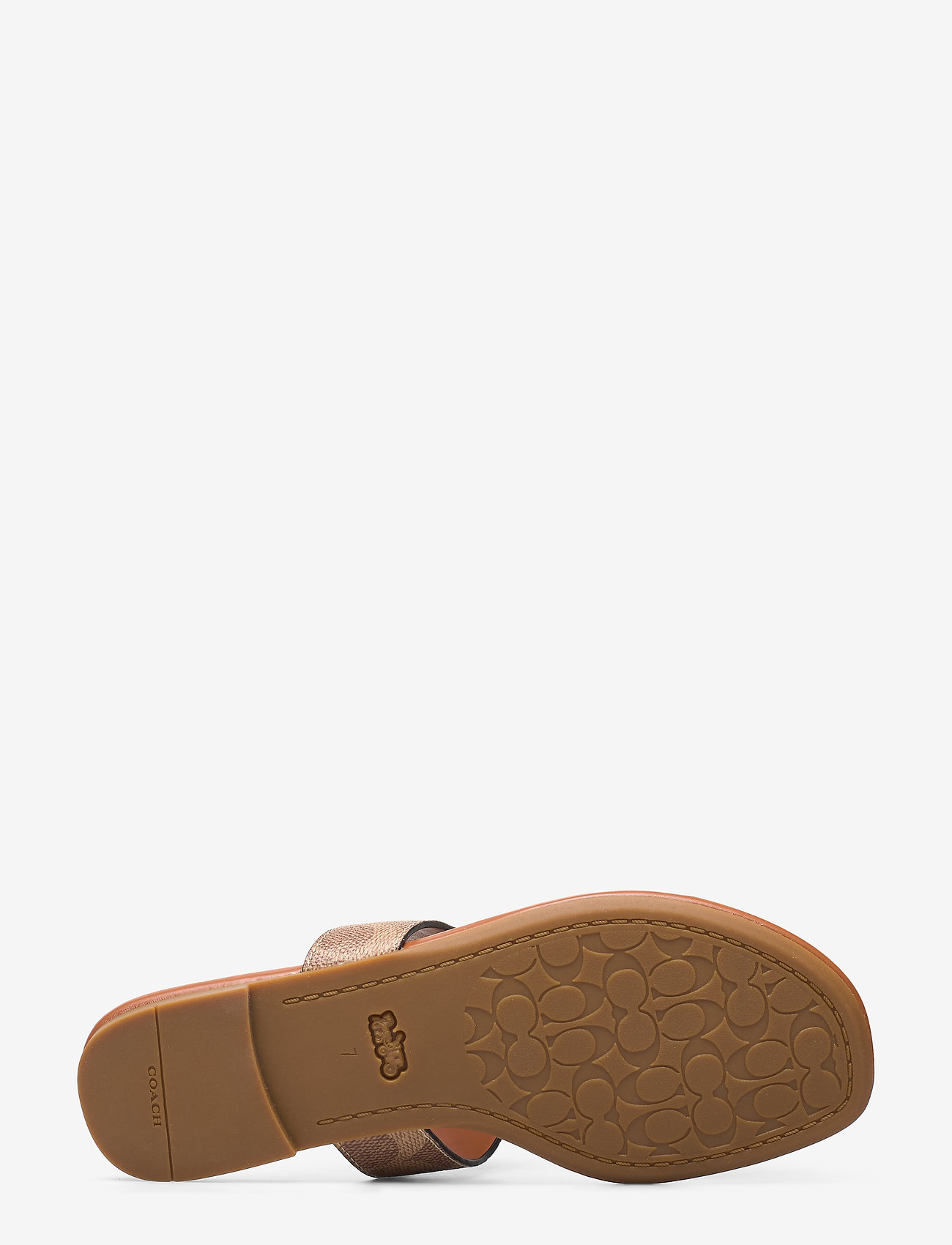 Jessie Thong Sandal (Tan/dark Brown) - Coach