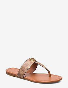 Jessie Thong Sandal - TAN/DARK BROWN