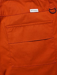Columbia - Firwood™ 5 Pocket Slim Pant - pantalon de randonnée - dark sienna - 4