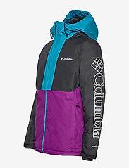 Columbia - Timberturner Jacket - kurtki narciarskie - plum, black, fj - 2