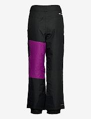 Columbia - Hero Snow™ Pant - spodnie narciarskie - black, plum - 2