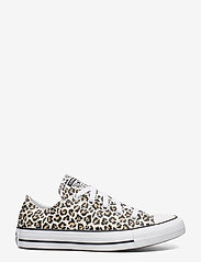 Converse - CTAS OX - sneakers - black/driftwood/light fawn - 1