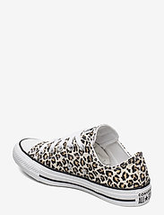 Converse - CTAS OX - sneakers - black/driftwood/light fawn - 2