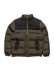 Toby Winter jacket - 774/GREEN