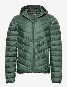LT DOWN JKT M - down jackets - pine