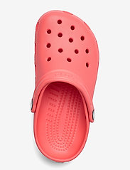 Crocs - Classic Clog  - clogs - fresco - 3