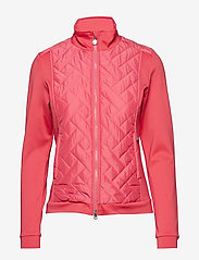 Daily Sports - AUSTIN JACKET - golf jackets - watermelon - 1