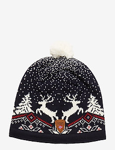Dale Christmas Hat - BLUE