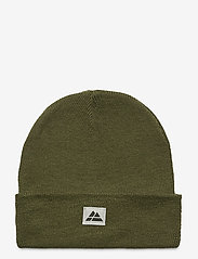 Danish Endurance - Beanie Recycled Polyester 1-pack - bonnet - green - 0