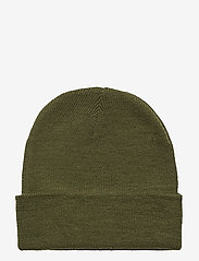 Danish Endurance - Beanie Recycled Polyester 1-pack - bonnet - green - 1