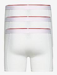 Danish Endurance - Bamboo Trunks 3 Pack - ondergoed - white - 1
