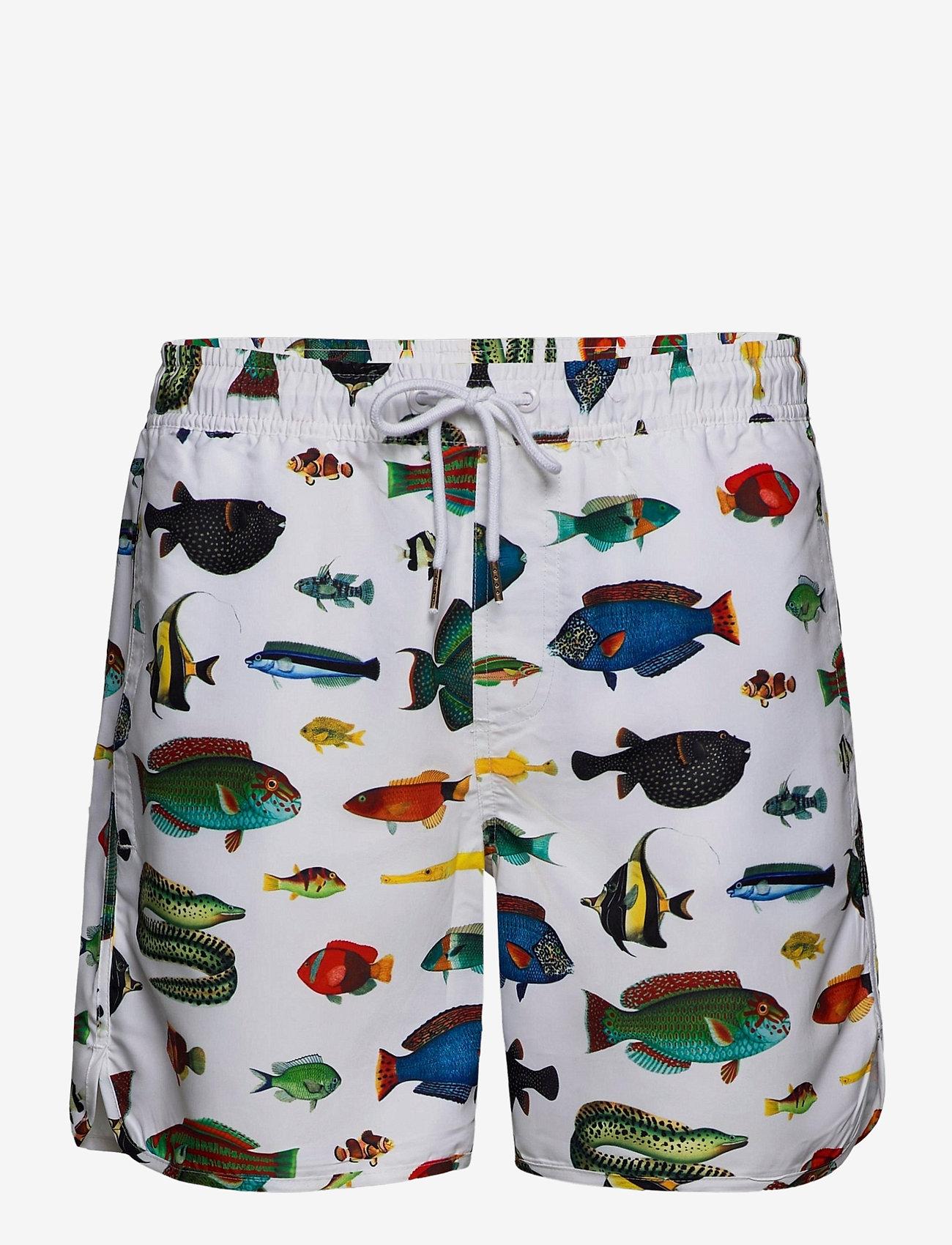 DEDICATED - Swim Shorts Tropical Fish - shorts de bain - white - 0