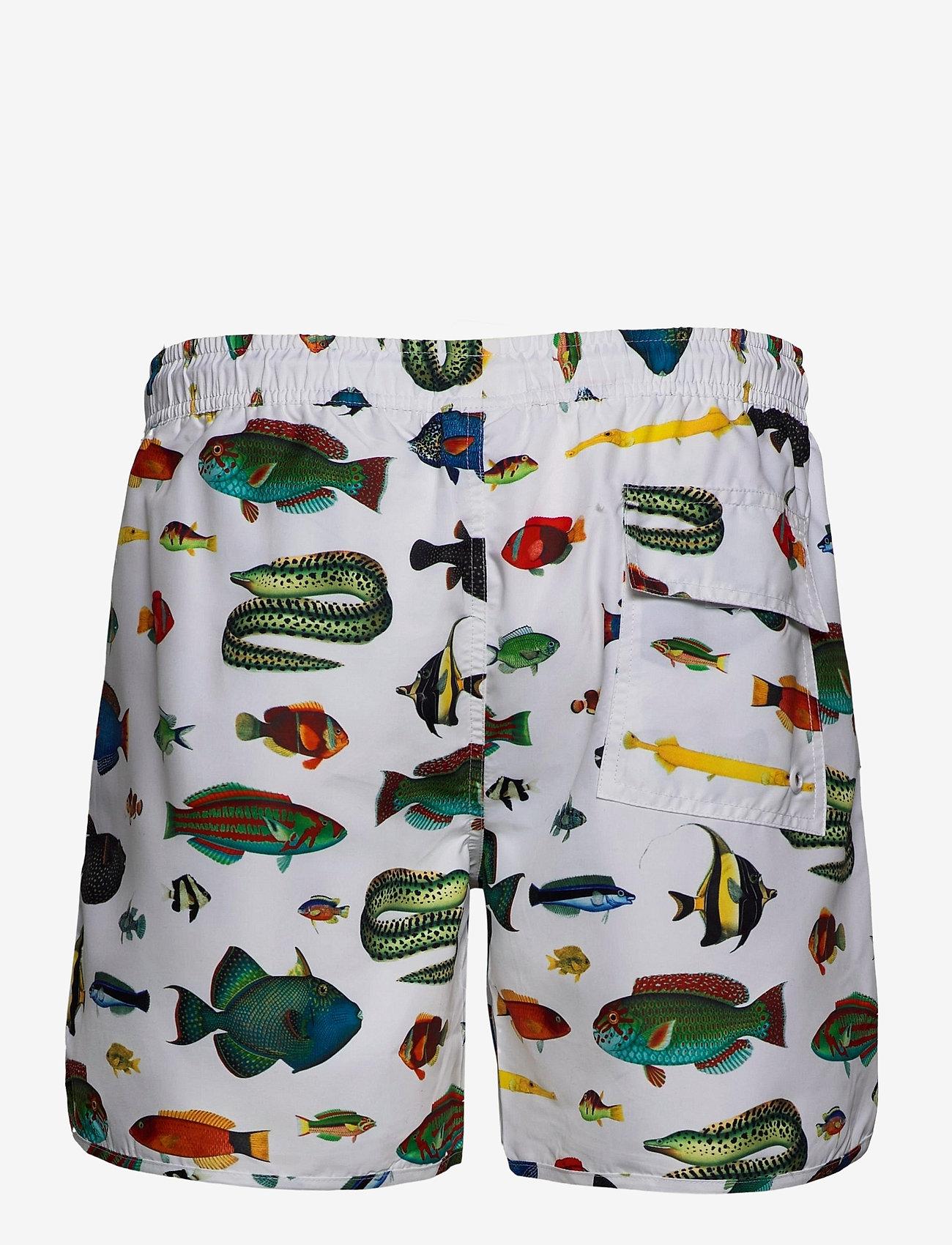 DEDICATED - Swim Shorts Tropical Fish - shorts de bain - white - 1