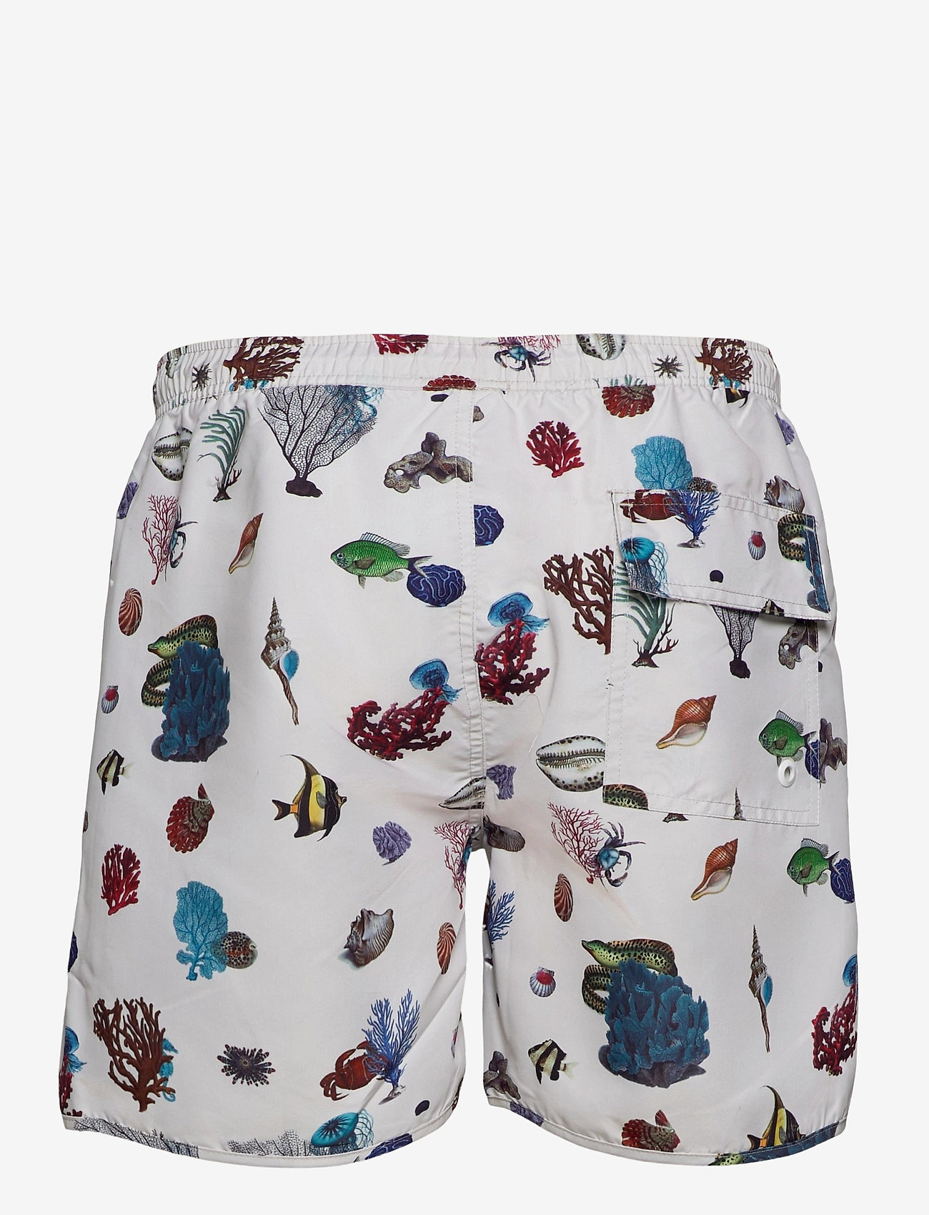 DEDICATED - Swim Shorts Coral Reef - shorts de bain - off-white - 1