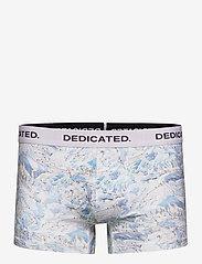 DEDICATED - Boxer Briefs Kalix Ski Area - caleçon - multi color - 0