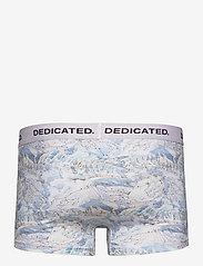 DEDICATED - Boxer Briefs Kalix Ski Area - caleçon - multi color - 1