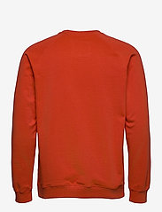 DEDICATED - Sweatshirt Malmoe Local Planet Pale Red - sweats - paprika - 1