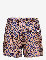 DEDICATED - Swim Shorts Sandhamn Leopard Light Brown - shorts de bain - chipmunk - 1