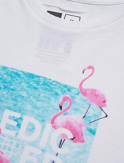 Dedicated T-shirt Stockholm Flamingos- T-shirts