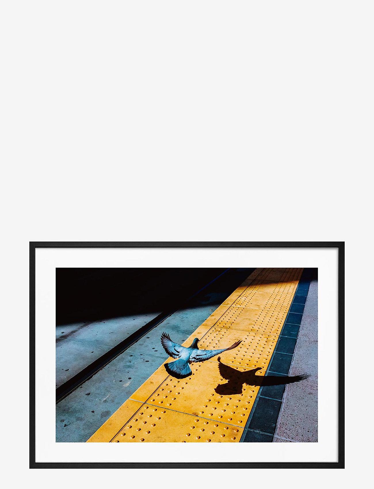 Democratic Gallery - Poster City Bird - home decor - yellow - 0