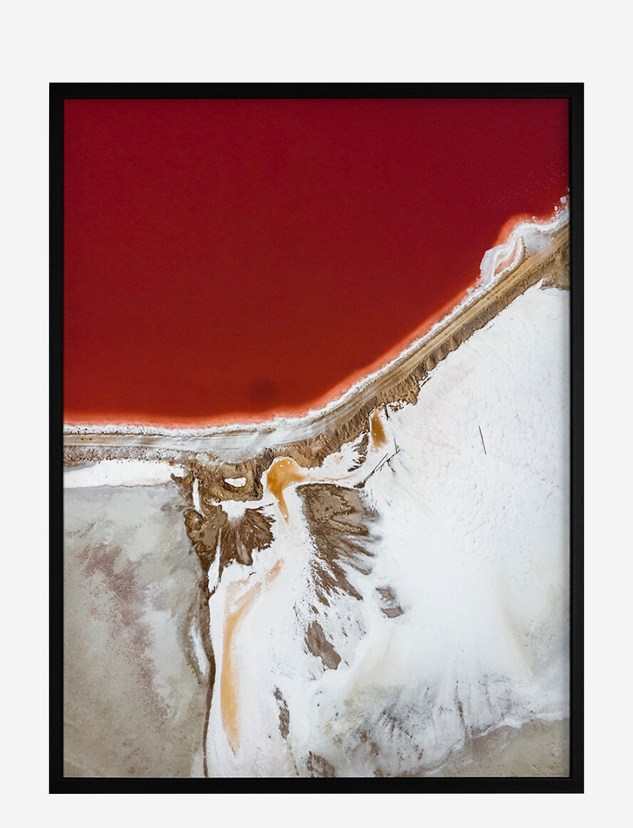 Democratic Gallery - Poster Earth and Nature - décor - red - 0