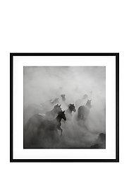 Poster Wild Horses - BLACK