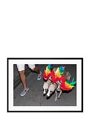 Poster Rainbow Dogs - RED