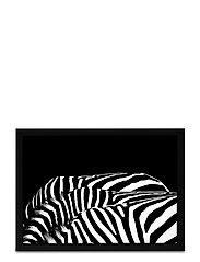 Poster Graphic Design Zeebra - BLACK