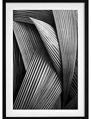 Poster Abstract Palm Tree - BLACK