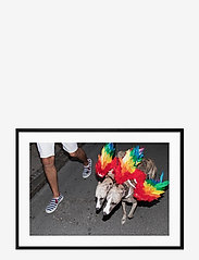 Democratic Gallery - Poster Rainbow Dogs - wystrój domu - red - 0