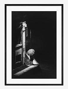 Poster Night in Venice - obrazy - black