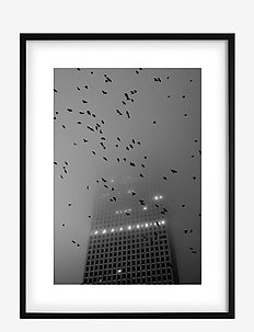 Poster Monochrome Birds over City - affiches - black