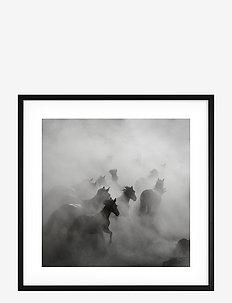 Poster Wild Horses - wystrój domu - black