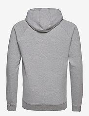 Denim project - BASIC SWEAT HOODIE - basic sweatshirts - 003 grey - 1