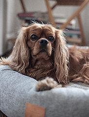 Denjo Dogs - Donut Bed Leather - hundesenge - graphite - 5