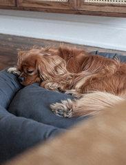 Denjo Dogs - Donut Bed - hundesenge - stone grey - 5