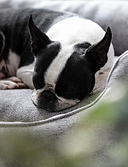 Denjo Dogs - Nest Bed Gusto - hundesenge - light grey - 6